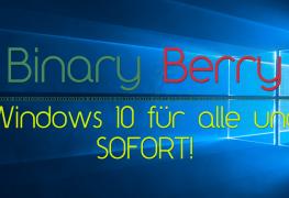 binary_berry_win10