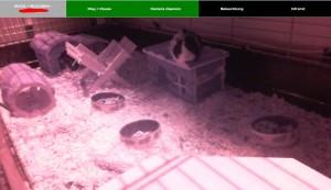 schweindlcam_webserver