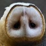 Profilbild von Denise W.